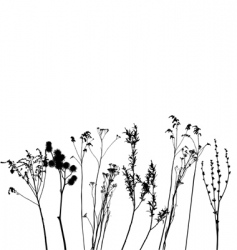 grass collection for designers vector image