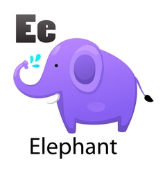 Alphabet e with elephant vector