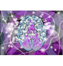 Brain activity vector
