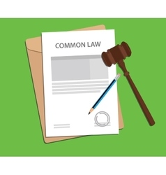 common law concept with gavel and vector image