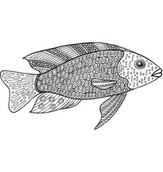 doodle zentangle fish coloring page for adults vector image