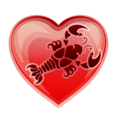 zodiac sign Cancer vector image