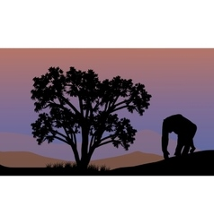Silhouette of gorilla walking vector