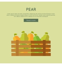 Pear web banner in flat style design vector
