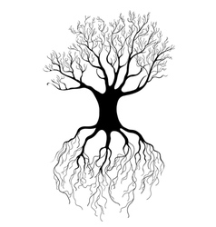 graphical tree vector image vector image