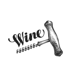 Wine corkscrew Sketch vector image