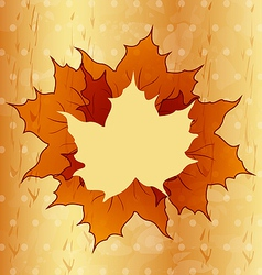 Autumnal maple leaves wooden texture vector