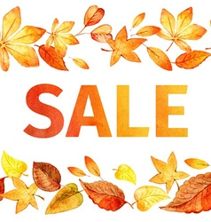 Seamless pattern of autumn leaves autumn sale vector