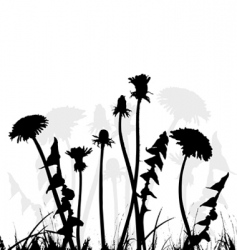 dandelion collection for designers vector image vector image