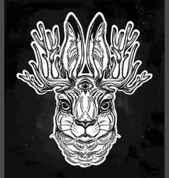 jacalope three eyed magical creature portrait vector image vector image