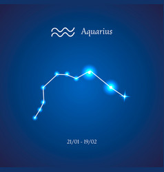 Zodiac constellation aquarius the water-bearer vector