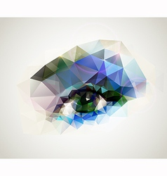 woman eye vector image