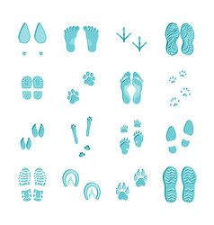 ice blue footprints set on white vector image vector image