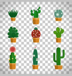 cactus icons in flat style vector image vector image