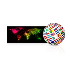 globe frome flag vector image vector image