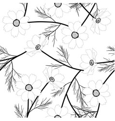 Cosmos flower on white background vector