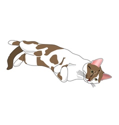 Relaxing cat vector