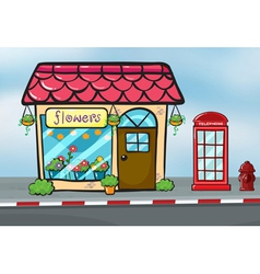 A flower shop and a callbox vector image