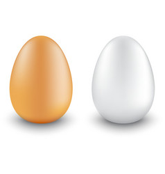 Two chicken eggs realistic different colors vector