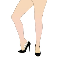 The beautiful legs of a woman vector