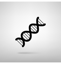 The dna sign vector