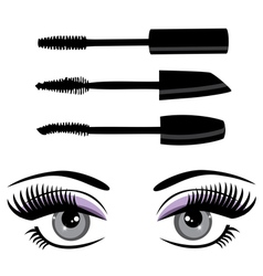 Eye mascara vector