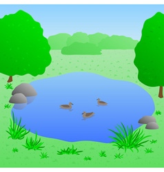 Lake with ducks vector