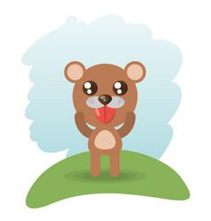 Cute bear animal wildlife vector