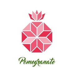 Pomegranate geometric vector