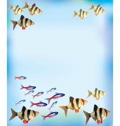 Aquarium background vector