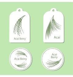 Acai palm leaves and acai berries vector