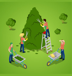 Isometric people trimming tree gardener working vector