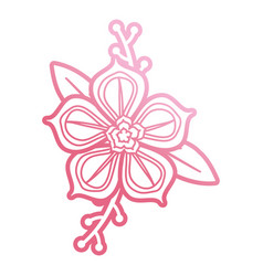 Pink flower design vector
