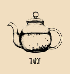 Teapot hand drawn transparent vector