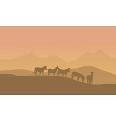 Zabra in desert scenery vector