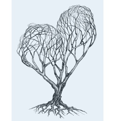 Graphic heart shaped tree sketch vector image vector image