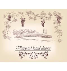 Hand drawn label vineyards vector