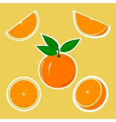 Design stickers with juicy orange vector