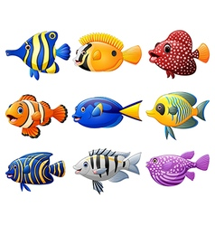 Fish cartoon set vector