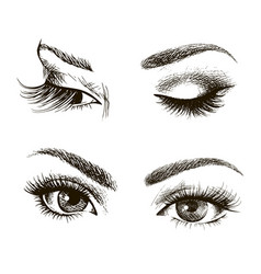 female eye set vector image