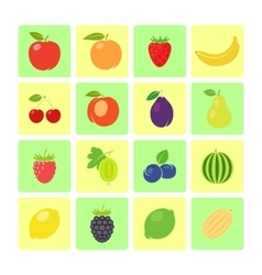 Flat style fruit icon set vector