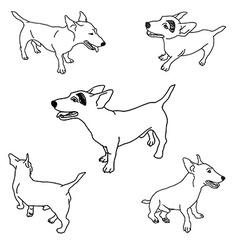 Set of adorable jack russell vector