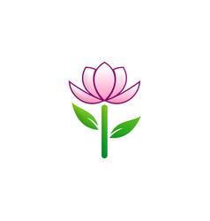beauty flower tree logo vector image