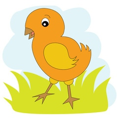 Chicken on the green grass vector image