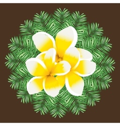 Plumeria seamless pattern palm leaves background vector image vector image