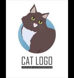 Siberian cat flat design vector