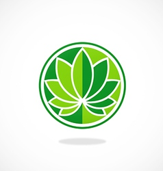 Leaf round lotus spa logo vector