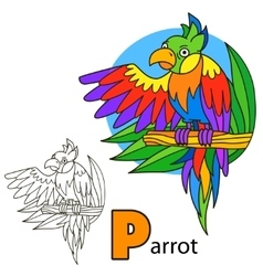 Parrot coloring book page vector