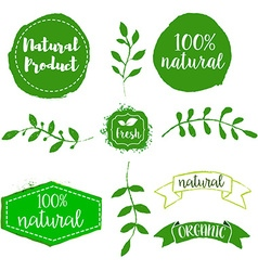 Set of natural product labels hand drawn design vector