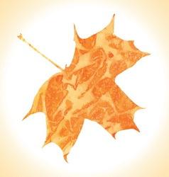 Watercolor autumn maple leaf vector